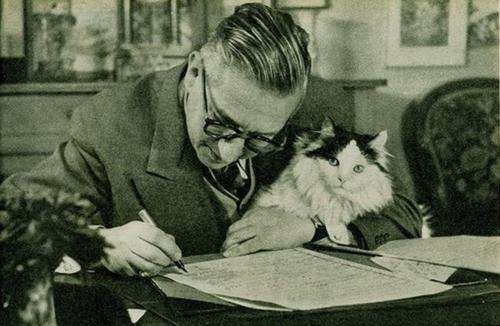 sartre-and-cat
